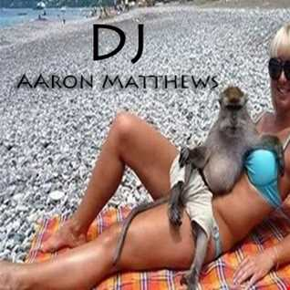 Relax The Monkey By DJ Aaron Matthews