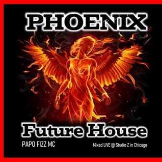 PHOENIX FUTURE HOUSE