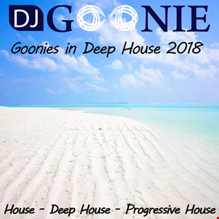 DJ Goonie  - Goonies Mix in House 2018