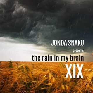 Jonda Snaku - The Rain in my Brain XIX