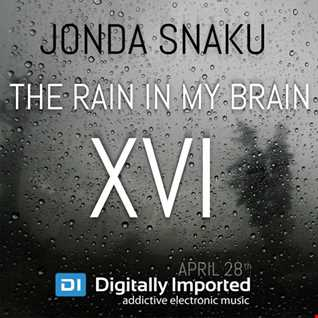 Jonda Snaku - The Rain in my Brain XVI