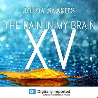 Jonda Snaku - The Rain in my Brain XV