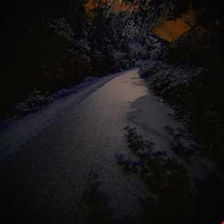 Naturd - Shadows at night