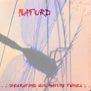 Understand how nature thinks 2008 - A dark track