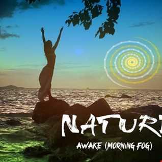 Awake (morning fog version)