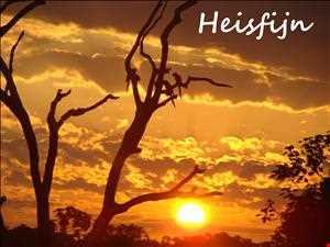 Heisfijn 25 Yearmix 2012