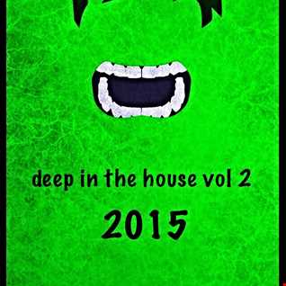 01 deep in the house  2015
