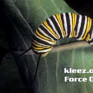 kleez.one   575 Force Of Nature