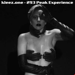 kleez.one   293 Peak Experience