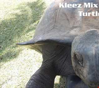 Kleez Mix   067 Turtle Wax