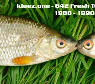 kleez.one   642 Fresh Tunes From 1988   1990