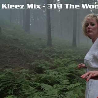 Kleez Mix   313 The Woods