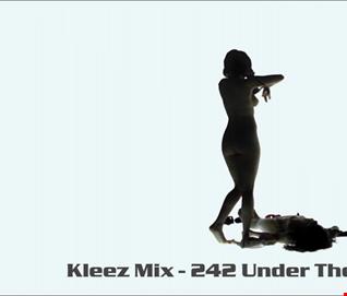 Kleez Mix   242 Under The Skin