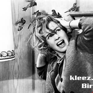 kleez.one   335 Bird Alert