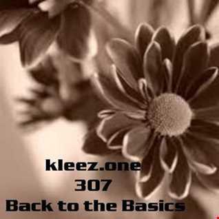 kleez.one   307 Back to the Basics