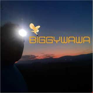 BiggyWaWa's Big Trance Blowout 2020!!