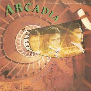 Arcadia: Goodbye Is Forever (T80sRMX Extended Mix)