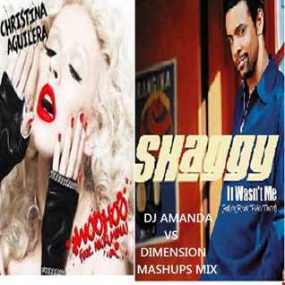 XTINA AGUILLERA feat. NIKKI MINAGE VS SHAGGY - WOO HOO IT WASN'T ME [DJ AMANDA VS DIMENSION MASHUPS MIX]