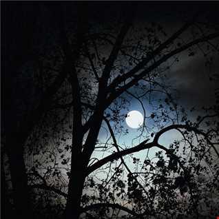 Es Cee - Full Moon - 29-03-2014