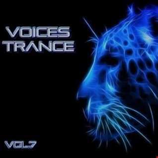 Voices Trance Vol 7