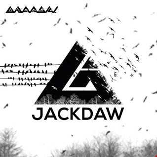 GNARSKI - Jackdaw