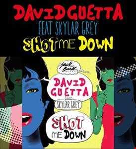 David Guetta feat  Skylar Grey & Alvaro   Shot Me Down For Action (SergioSam Mashup)