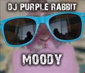 DJ Purple Rabbit - Lollypop mix
