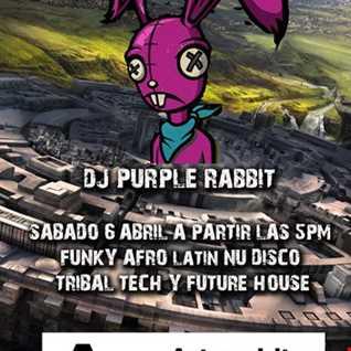 DJ Purple Rabbit live at Artespiritu Alicante 6 April