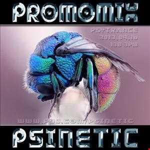 Psinetic - Promomix (2013.09.16) Progressive Psytrance