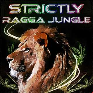 LIVE STRICTLY RAGGA JUNGLE RADIO   DJ STP 02.02.2018