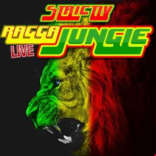 strictlyraggajungle.com LIVE DJ STP MINIMIX 30th AUGUST 2018