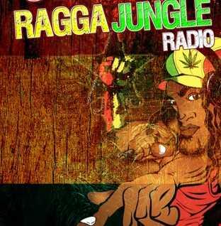 DJ STP STRICTLY RAGGA JUNGLE 001 www.strictlyraggajungle.com