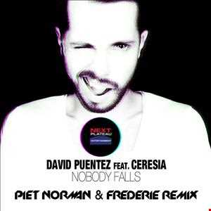 David Puentez feat. Ceresia - Nobody Falls (Piet Norman & Frederie Remix)