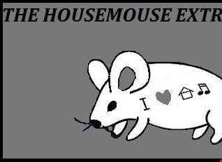 housemouse 51 ( the diskofunkula )