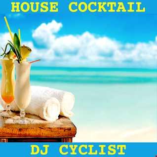 DJ Cyclist   House Cocktail