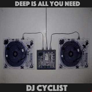 DJ Cyclist   Deep Is All You Need