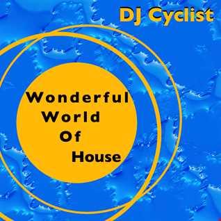 DJ Cyclist   Wonderfull World Of House