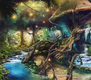 Magic Mushroom Land (9 4 16)