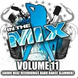 Dj Vinyldoctor - In The Mix Vol 11 (Audio Hedz Recordings Hard Dance Slammer)