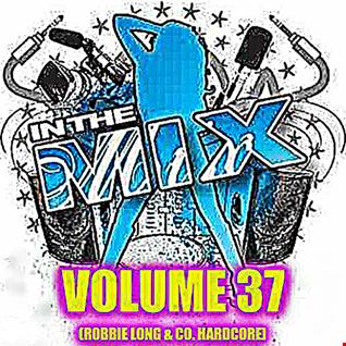 Dj Vinyldoctor - In The Mix Vol 37 (Robbie Long & Co. Hardcore)