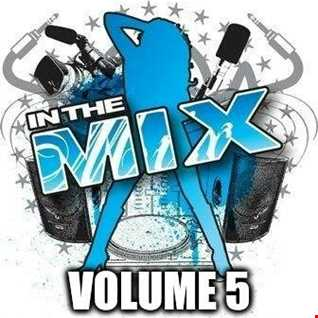 Dj Vinyldoctor   In The Mix Vol 5 (The It's All ''White'' On The Night Mix)