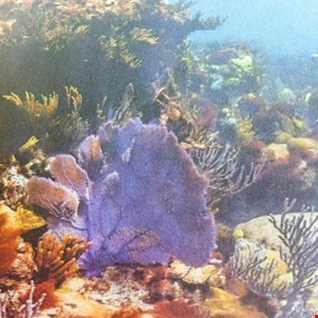 FL Fagos    Underwater  dnb mix
