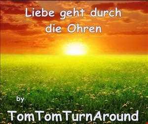 TomTom-Mix 030  :::  Liebe geht durch die Ohren  :::