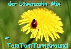 TomTom-Mix 026   -   Loewenzahn Mini Mix