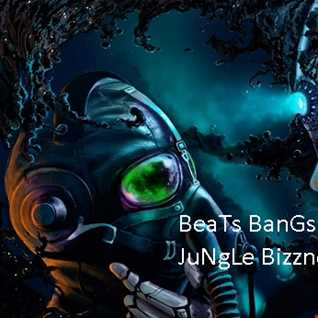 Beats Bangs Breakbeat Jungle Bizznzez...RoKo