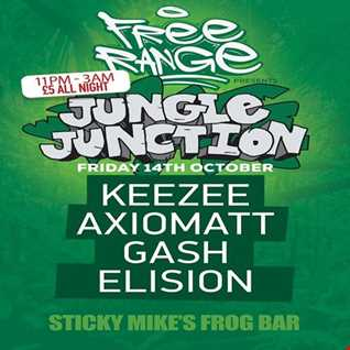 Jungle Junction at Sticky Mikes Frog Bar - 14th October 2016 - Mixed By KeeZee
