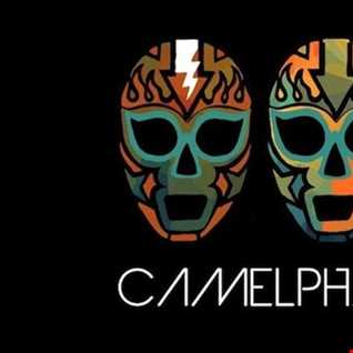 my camelphat selection(thomas williams)
