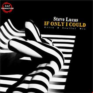 Steve Lucas - If Only I Could (Erick B Soulful Mx)