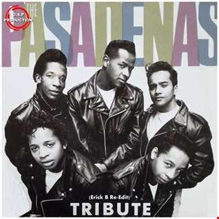 The Pasadenas - Tribute (Erick B Re-Edit Mix)