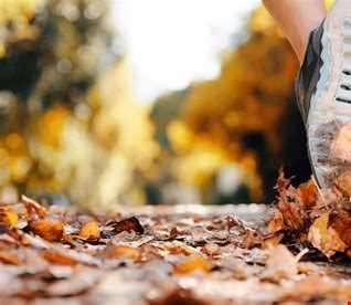 Autumn Cardio Workout